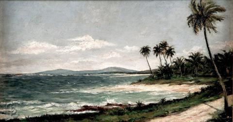 Costa de Luquillo