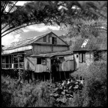 Hacienda Llanada, Coffee Plantations of Puerto Rico