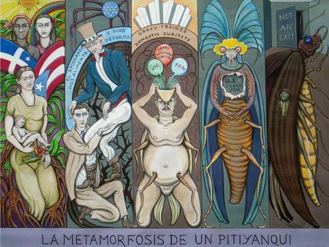 La metamorfosis de un Pityyanqui