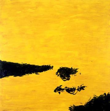 A field of sunflower