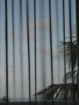 Paraíso Tropical I