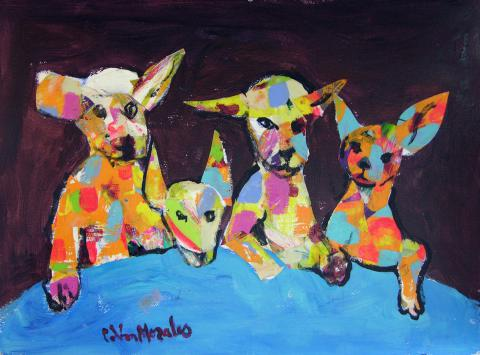 Tribu Canina
