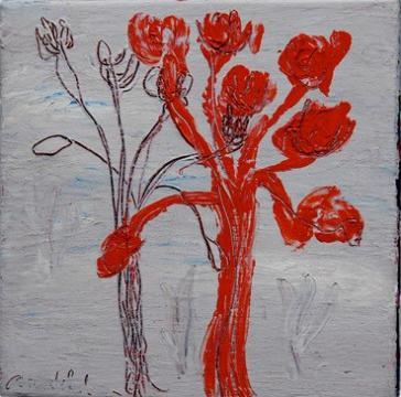 Flor de Tortola II