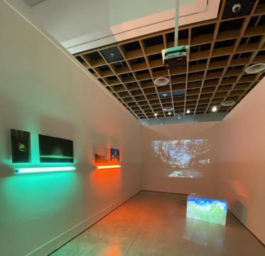 Vista de sala de obras en la exhibición 'Espacio Común', Museo de Arte de Puerto Rico (2019)